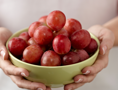How to Live a Fruitful Life in Our Day